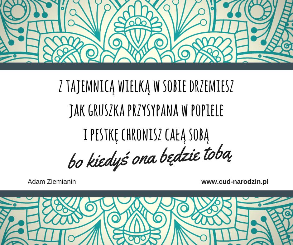Cytaty Ciąża Poród Macierzyństwo Cud Narodzin
